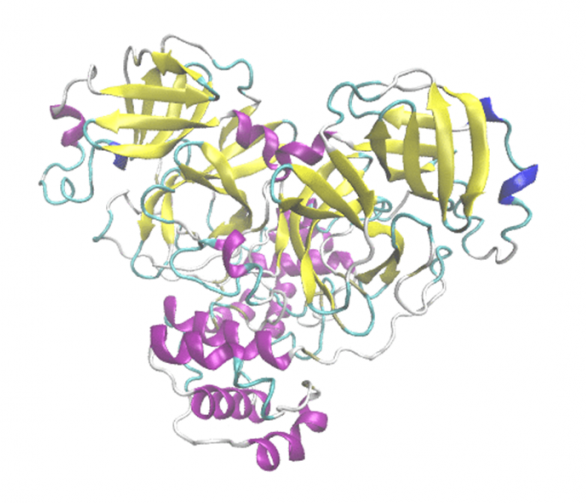 Structure-of-the-SARS-Cov2Main-protease-protein-768x958.png